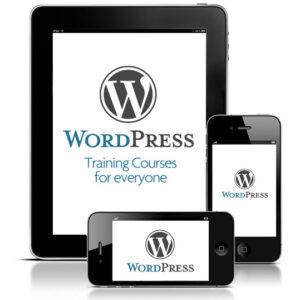 infinitemarketing.info-wordpress-training-courses